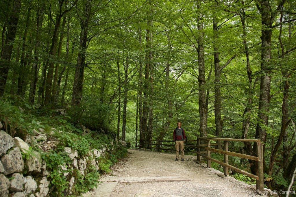 Sentiero Cascata Savica